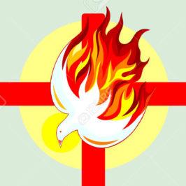 Prendre sa croix et brûler du feu de l'Esprit