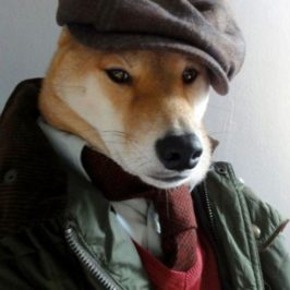 Je suis un chien… l'univers des paralogismes.